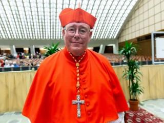 Đức Hồng Y Jean-Claude Hollerich, Tổng Giám mục Luxembourg, tại Vatican, ngày 5 tháng 10 năm 2019 (Ảnh: Daniel Ibáñez / CNA)
