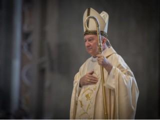 Đức Hồng y Pietro Parolin, trong ảnh tại Vương cung thánh đường Thánh Peter ngày 3 tháng 10 năm 2015./ Mazur / catholicnews.org.uk)